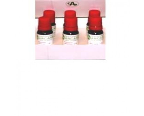 CARBO ANIMALIS 6LM 10ML GTT