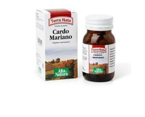 CARDO MARIANO 70TAV