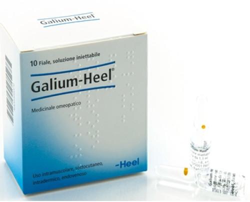 GALIUM 10F 1,1ML HEEL