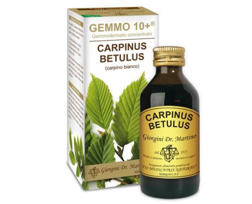 CARPINO BI 100ML ANALCO GEM10+