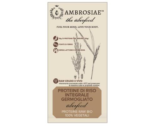 AMBROSIAE UBERFOOD PROT RISO I