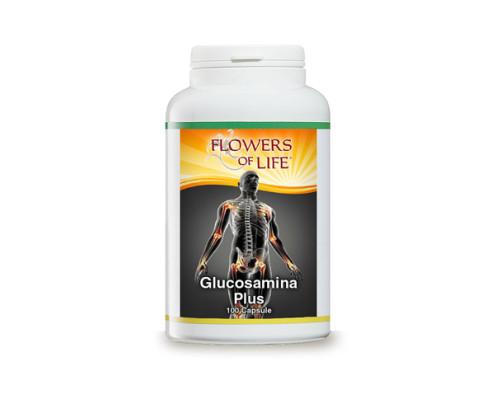GLUCOSAMINA PLUS 100CPS FLOWE